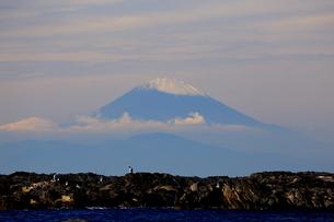 富士山の写真素材 [FYI03155537]