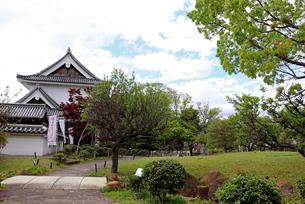 京都長岡京・勝竜寺城公園の写真素材 [FYI03155584]
