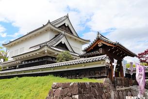 京都長岡京・勝龍寺城の写真素材 [FYI03155585]