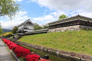 京都長岡京・勝龍寺城の写真素材 [FYI03155586]