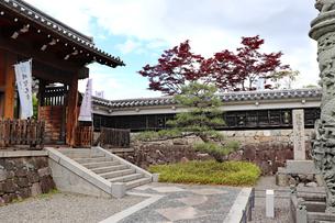 京都長岡京・勝竜寺城公園の写真素材 [FYI03155591]