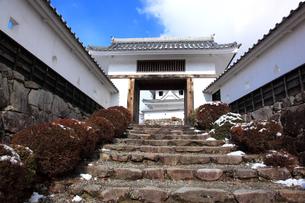 冬の郡上八幡城 城門の写真素材 [FYI03155603]