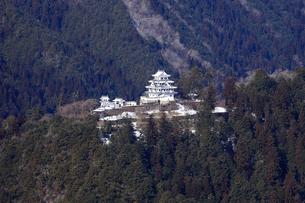 冬の郡上八幡城の写真素材 [FYI03155611]