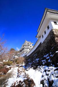 冬の郡上八幡城の写真素材 [FYI03155614]