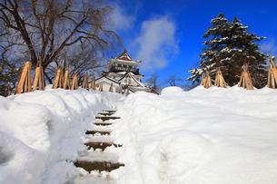 冬の横手城の写真素材 [FYI03155622]