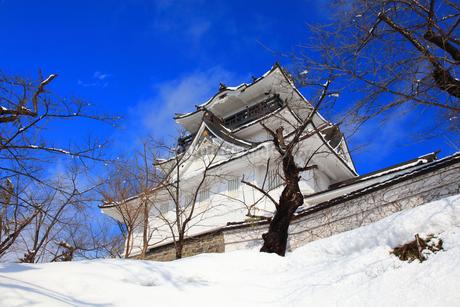 冬の横手城の写真素材 [FYI03155626]