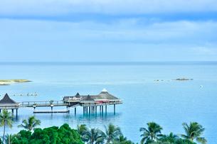 ニューカレドニア・ヌメアの海に突き出たレストランとヤシの木々の写真素材 [FYI03155648]