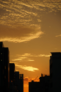 夕景と建物のシルエットの写真素材 [FYI03155840]