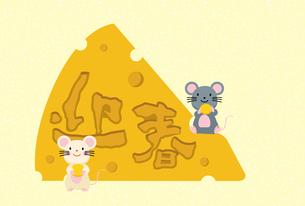 イラスト素材: ネズミとかじられたチーズのイラスト_2020年子年 令和 和柄_年賀状用素材 横のイラスト素材 [FYI03155856]