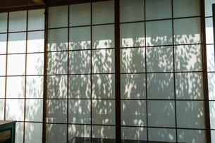 光が差し込む和室の障子の写真素材 [FYI03155889]