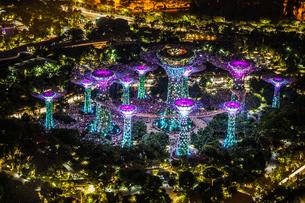 マリーナ・ベイ・サンズ展望台からの夜景(シンガポール)の写真素材 [FYI03155906]