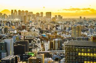 文京シビックセンターからの夕景の写真素材 [FYI03155941]