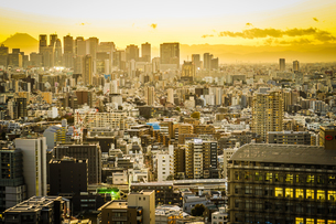 文京シビックセンターからの夕景の写真素材 [FYI03156005]