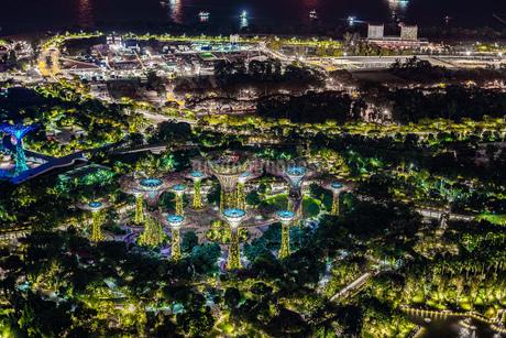 マリーナ・ベイ・サンズ展望台からの夜景(シンガポール)の写真素材 [FYI03156033]