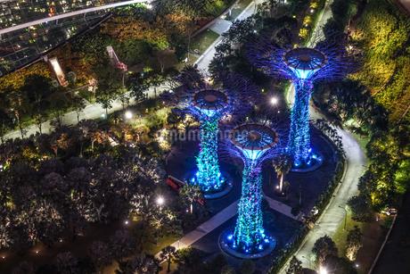 マリーナ・ベイ・サンズ展望台からの夜景(シンガポール)の写真素材 [FYI03156055]