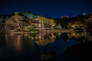 六義園の大名庭園(紅葉)の写真素材 [FYI03156092]