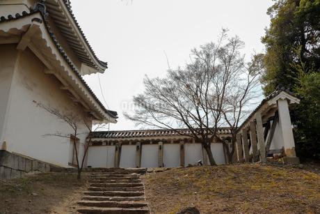 お城の櫓と塀の写真素材 [FYI03156122]