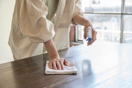 掃除をする女性の手元の写真素材 [FYI03156565]