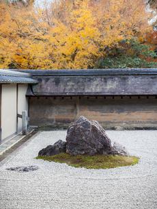 秋の龍安寺の庭園の写真素材 [FYI03156917]