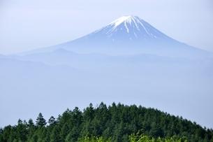 初夏の富士山遠望の写真素材 [FYI03157141]