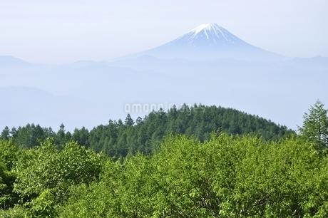 初夏の富士山遠望の写真素材 [FYI03157142]