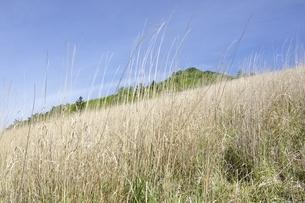 扇平のカヤトより望む乾徳山の写真素材 [FYI03157151]