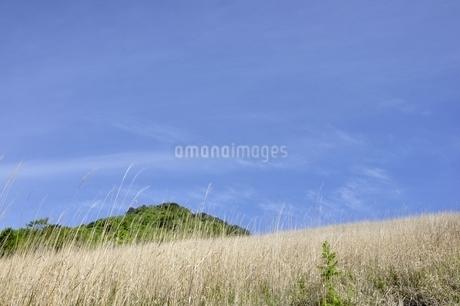 扇平のカヤトより望む乾徳山の写真素材 [FYI03157154]