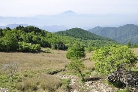 乾徳山の月見岩より富士山遠望の写真素材 [FYI03157158]
