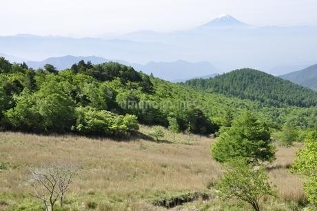 乾徳山の月見岩より富士山遠望の写真素材 [FYI03157159]