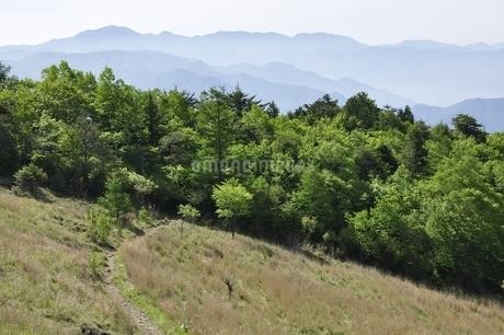 扇平の高原と大菩薩連嶺の写真素材 [FYI03157162]