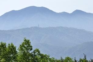 乾徳山より望む大菩薩嶺の写真素材 [FYI03157173]