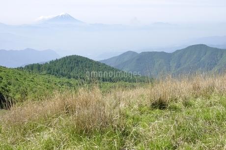 奥秩父より富士山遠望の写真素材 [FYI03157187]