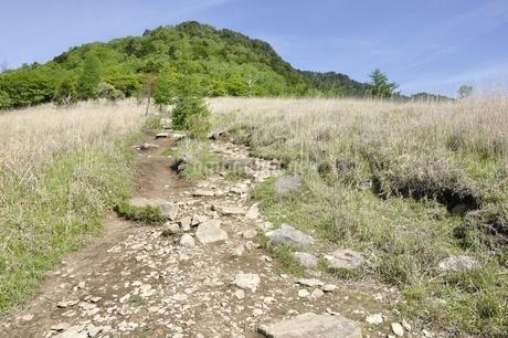 乾徳山へ登るカヤトの道の写真素材 [FYI03157188]