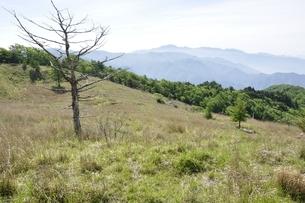 乾徳山の高原と大菩薩連嶺を望むの写真素材 [FYI03157189]
