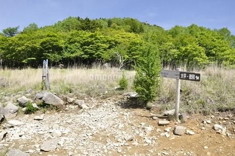 乾徳山の扇平の道標の写真素材 [FYI03157191]