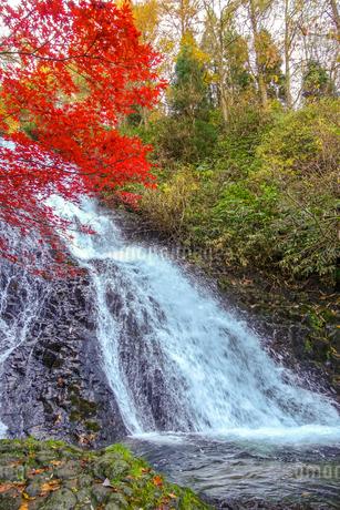真紅の紅葉と七滝の瀑布の写真素材 [FYI03157242]