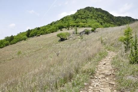 乾徳山と扇平の草原の写真素材 [FYI03157258]