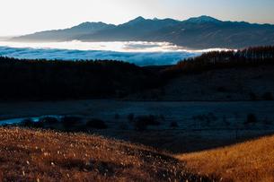 朝の踊り場湿原と雲海に浮かぶ南アルプス連峰の写真素材 [FYI03157912]