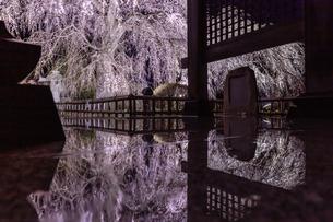 安国寺 日本 茨城県 水戸市の写真素材 [FYI03157958]