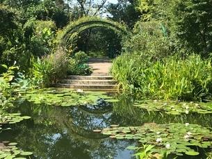 緑の庭の写真素材 [FYI03158364]