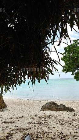 ビーチの写真素材 [FYI03158521]