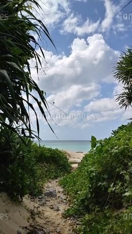 海岸への写真素材 [FYI03158528]