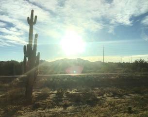 アリゾナの写真素材 [FYI03158688]