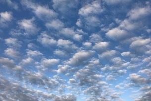 青空の写真素材 [FYI03158719]