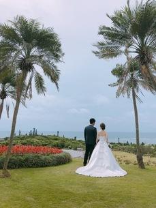 結婚式の写真素材 [FYI03158747]