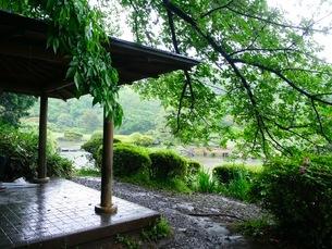 庭園の写真素材 [FYI03159085]