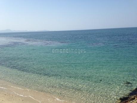 透明度の高い海の写真素材 [FYI03159338]