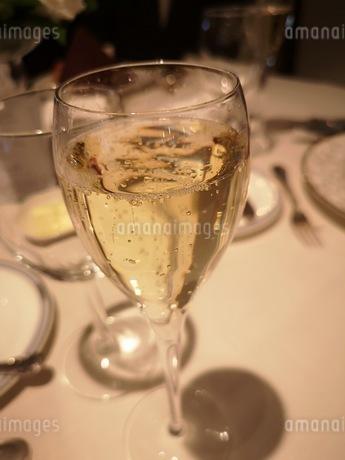 シャンパンの写真素材 [FYI03159539]
