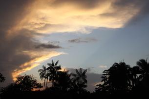 アマゾンの夕焼けの写真素材 [FYI03159608]