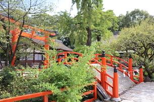 下鴨神社の写真素材 [FYI03159722]